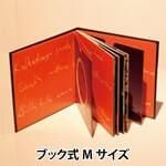 ブック式Mサイズ 小イメージ